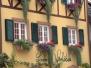 Bilder aus dem Kaiserstuhl